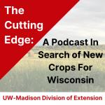 The Cutting Edge banner